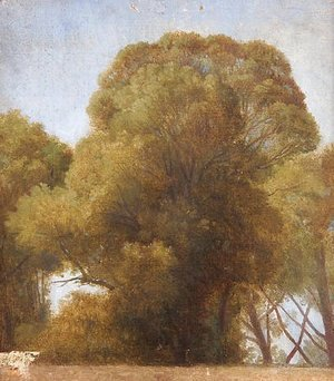 Jean Auguste Dominique Ingres - Study of trees