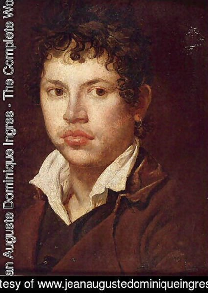 Jean Auguste Dominique Ingres - Portrait of a young man 2